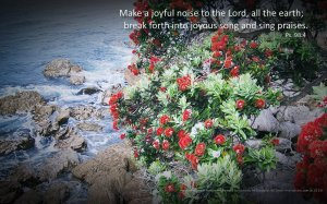 14_Make a joyful noise_.1440x900